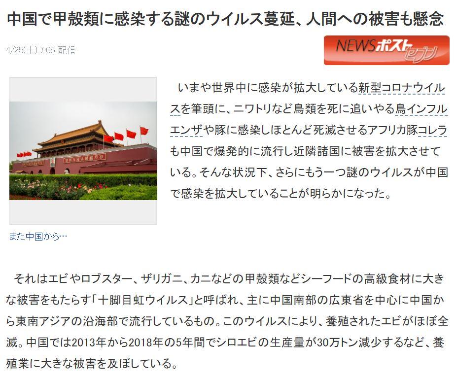 中國再爆神秘「甲殼類病毒」蝦子最慘 異變後恐「傳人類」!