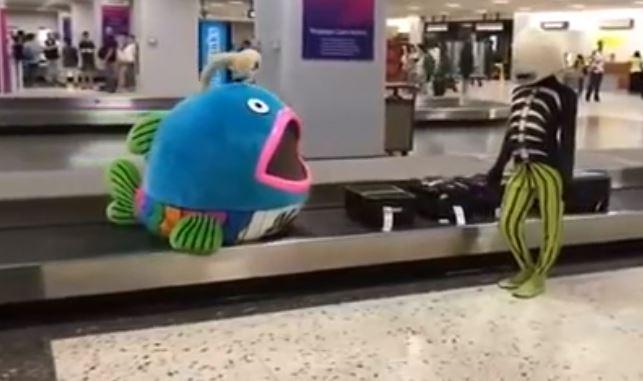 影/機場出現「怪魚行李箱」主人更奇葩!拿了行李後「驚悚合體」