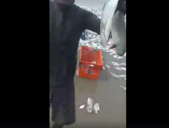 渡假海灘驚見「上萬海味」 民眾狂「挖魚礦」:大自然的禮物