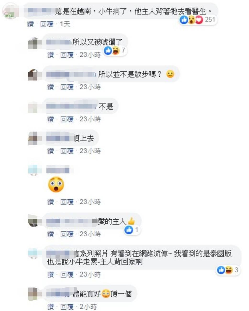 小牛太累「要主人背下山」照片瘋傳 網揭真相曝:很有愛!