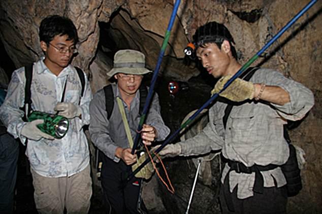 武漢實驗室偷偷「刪除蝙蝠照」0防護進洞穴取樣太可怕!