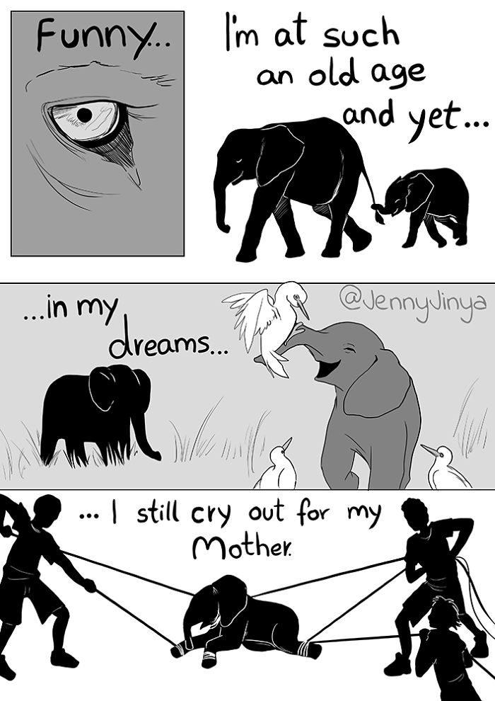 人類不該「再騎大象」的悲傷真相 牠「跟死神的對話」讓人心碎