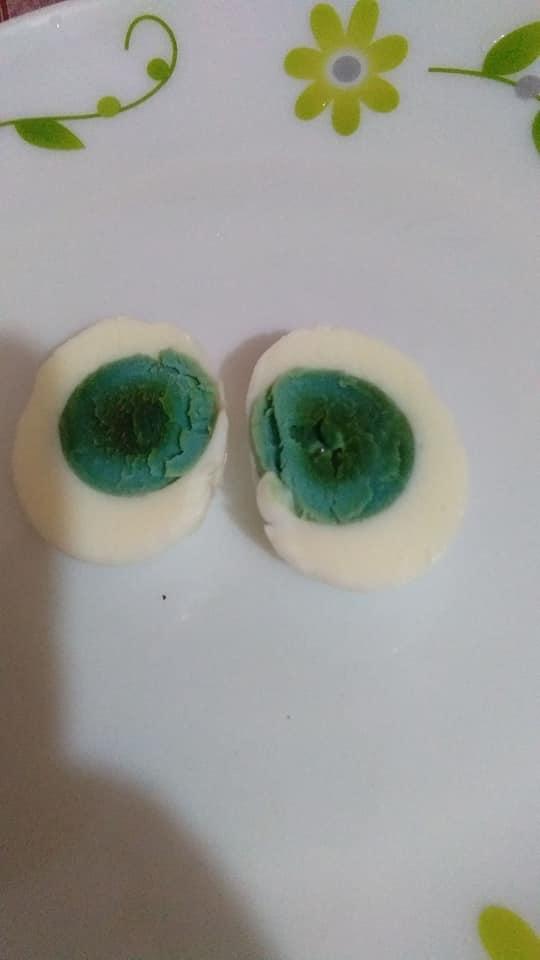 母雞狂生「綠色雞蛋」每顆都是 雞農「勇敢試吃」味道超神奇