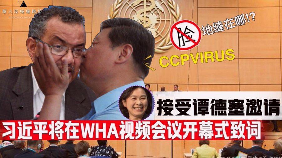 譚德塞說「謝謝」被罵爆 網友狂塞「梗圖」嗆:中國傀儡!