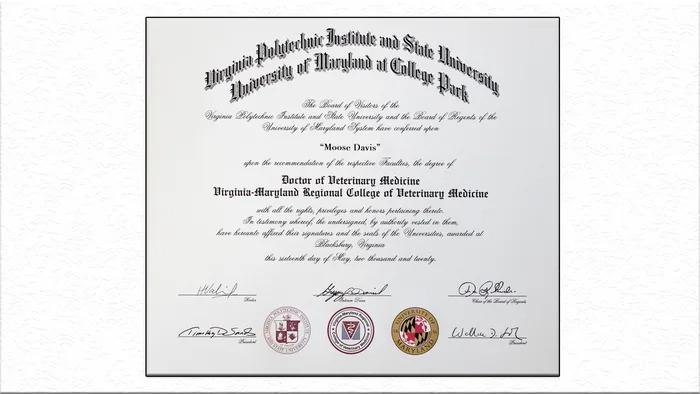 拉不拉多獲頒「榮譽博士」學位 學生職員「沒有牠都不行」!