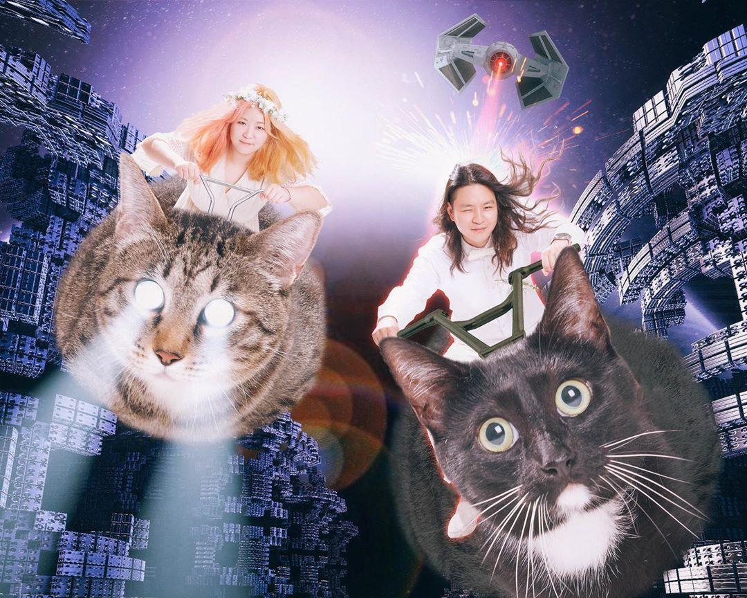 惡搞「寵物全家福」爆紅 貓咪變「薩諾斯」一秒把主人彈飛!