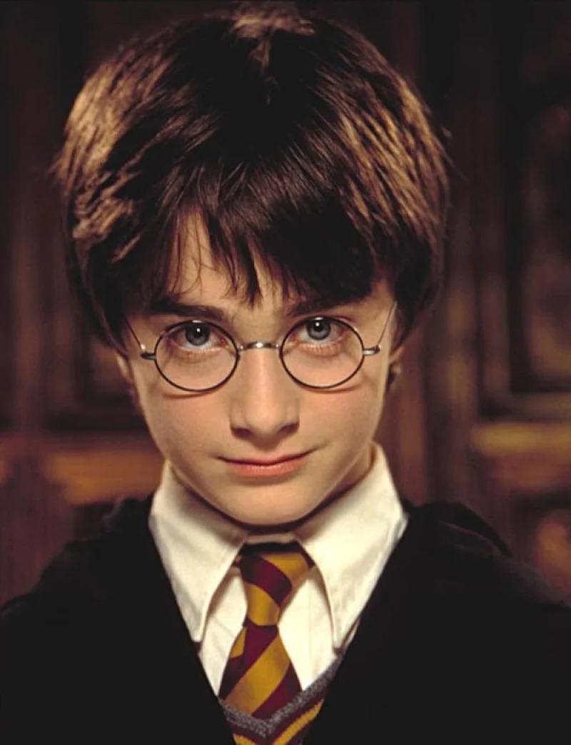 從垃圾中撿回《哈利波特》舊書 鑑定身價「暴漲1500倍」!