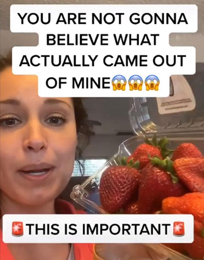 影/她發現「正確洗草莓」方法 沒做對「生物鑽出」全吃下肚