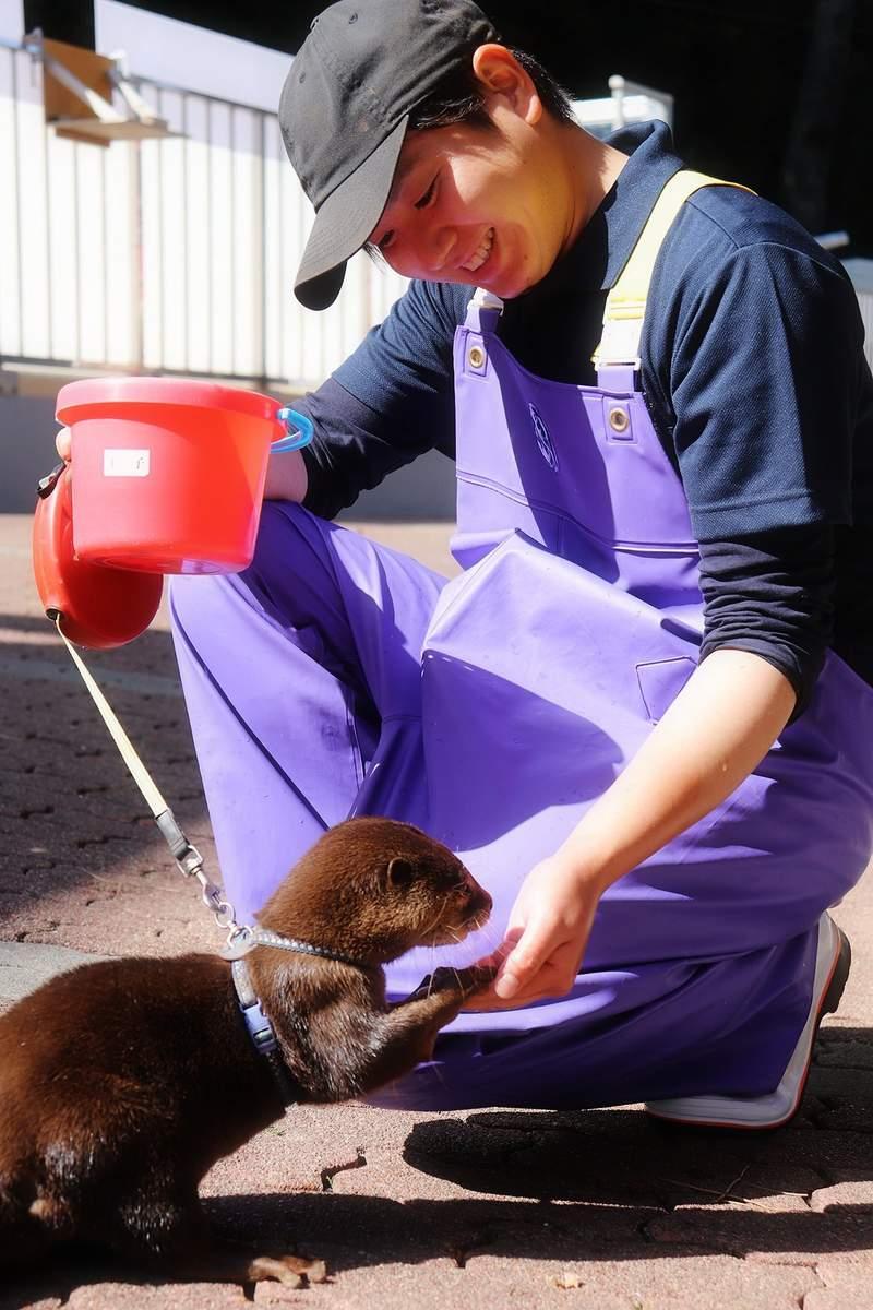 水族館PO優質日常被質疑「根本在賣肉」 沒有動物入鏡!