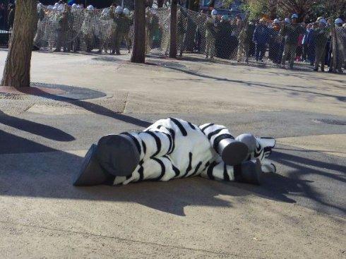 動物園認真演習「猛獸逃跑」 員工「穿布偶裝狂奔」好荒謬!