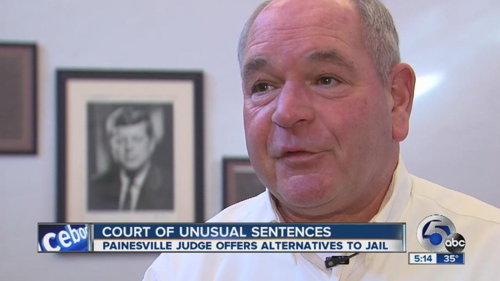專判「欺負動物案」的英雄法官 最愛「以牙還牙」沒人敢再犯!