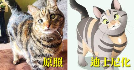 藝術家超會把寵物「迪士尼化」!單耳小貓變「電影主角」無違和