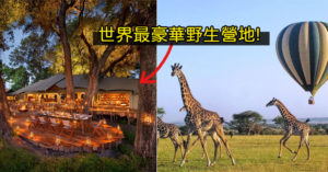 開箱史上「最頂級動物園」 每人「370萬」網讚:對得起價錢!