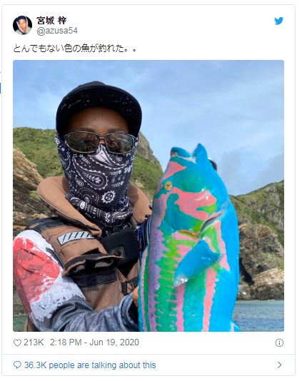 他釣到海龍王養的怪魚「顏色超繽紛」就像整隻掉到油漆裡