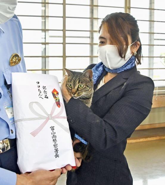 貓皇救出「摔進水溝的老翁」立大功 警局送上「驚喜大禮」致謝!