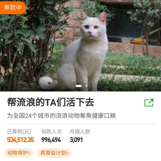 WHO聯手中國募款「24天只籌12萬」網嘆:比流浪狗還慘