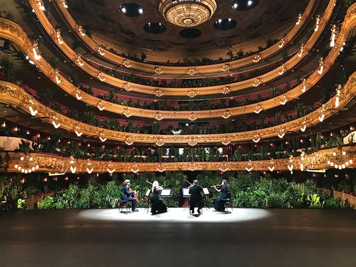 歌劇院重新開幕 第一場表演觀眾...2千多株「植物」!