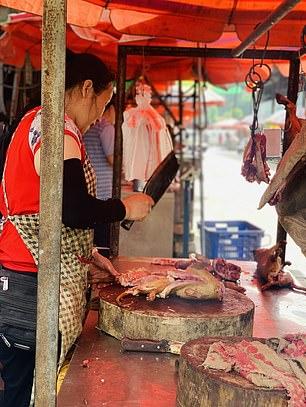 不甩禁狗肉!中國照辦「玉林狗肉節」 野味市場熱鬧開放中