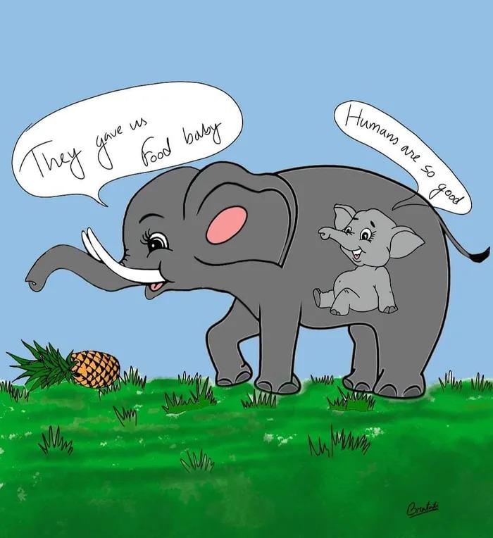 母象吃「炸彈鳳梨」與寶寶長眠 藝術家用漫畫紀念「最後一刻」