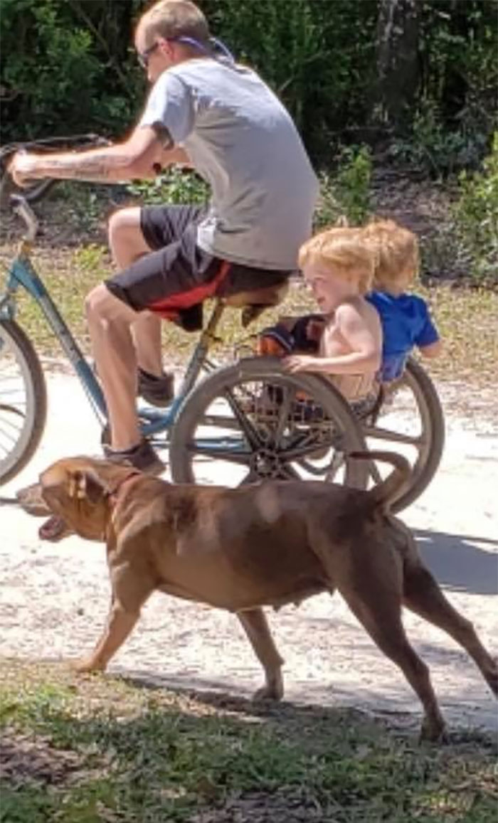 3歲自閉兒失蹤「毫髮無傷走回家」全靠忠犬一路保護小主人