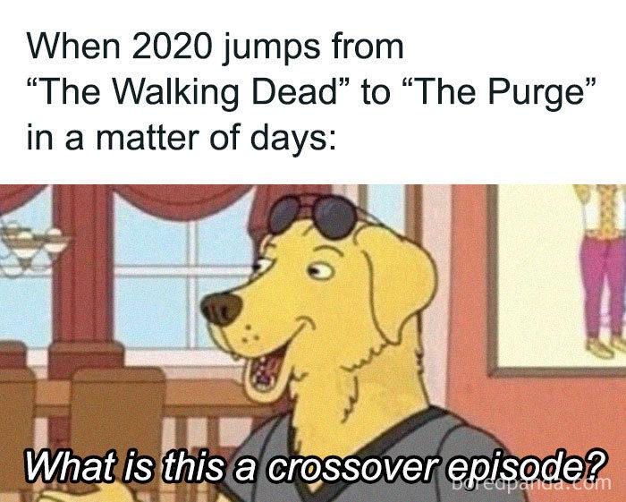 2020代表迷因