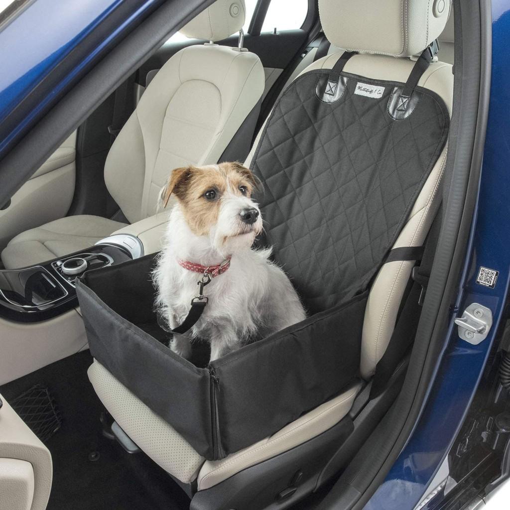 逛街「把狗留車上」被舉報 開窗流通「照樣開罰」成首例!