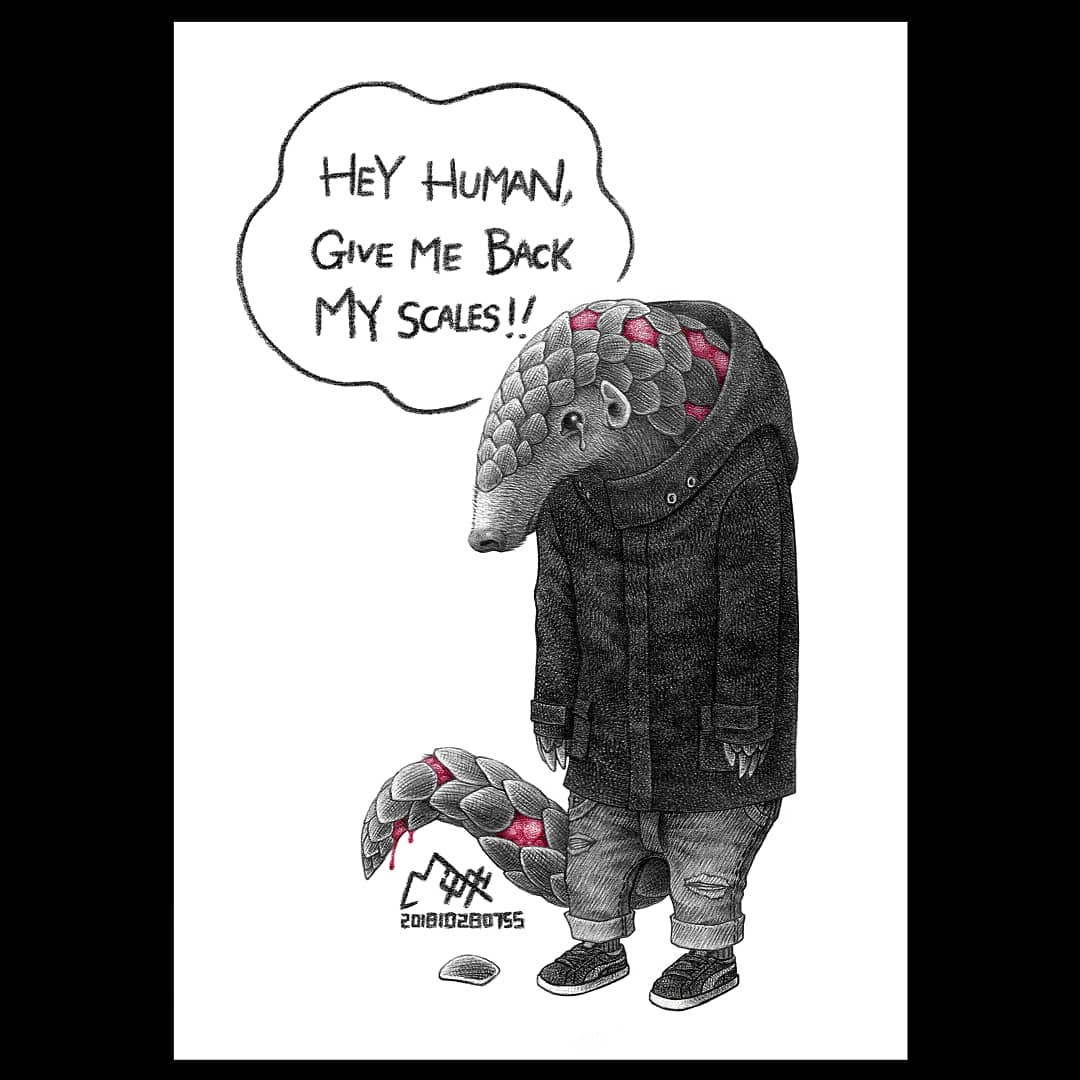 20張「動物想說的話」諷刺插畫 蝙蝠因為「武肺」超委屈!