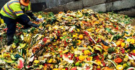 「浪費食物」越來越猖獗!法國推新法「重罰業者」還可幫助窮人