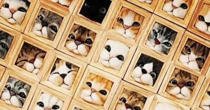 鏟屎官最熟悉的「很愛鑽貓咪」變最萌牆飾 屁屁擠出來版本也有!