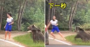 正妹「路上遇野熊」竟下車想自照炫耀 慘遭「猛獸反撲」!