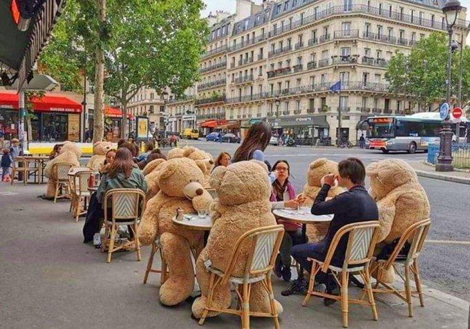 咖啡廳出動「泰迪熊」讓客人「保持社交距離」 網:有其它用處!