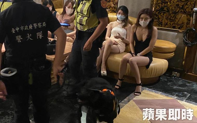 金錢豹臨檢「辣妹公關」放錯重點 嗲聲狂讚:警犬好口愛喔♥
