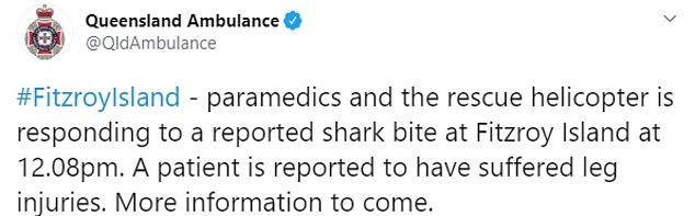為拍影片「被鯊魚拖咬」急送醫 瘋狂女大喊:還是愛鯊鯊!