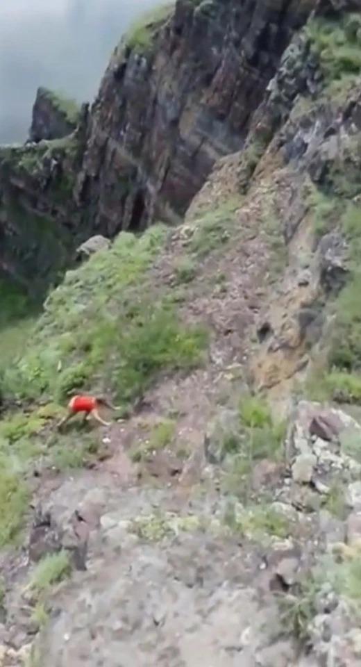 正妹為「拍網美照」爬上危險懸崖 短短15秒「直接消失」嚇壞友人