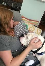 影/寶寶「睡到一半」驚醒 「拖著被被」爬到床下跟大狗睡!