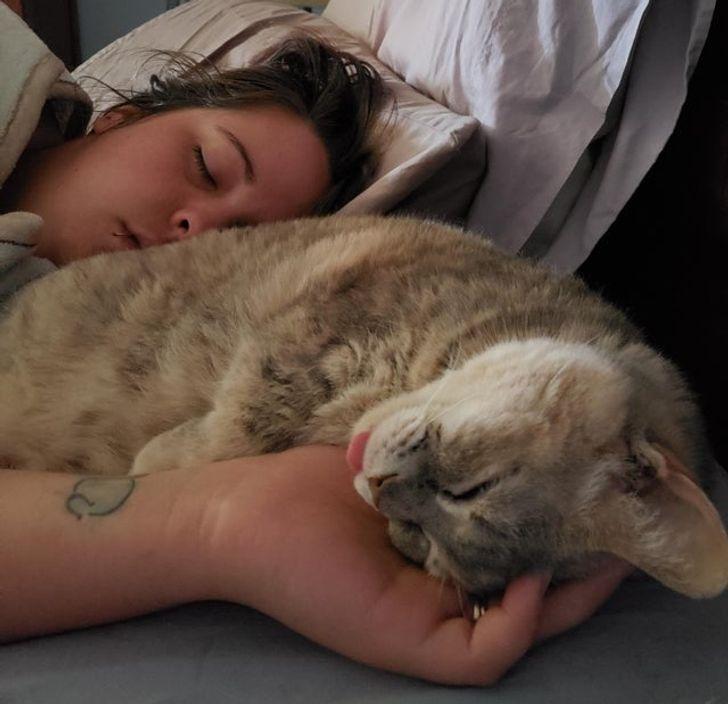 17張讓你知道「主人是全世界」的超暖寵物 不摸我我就抱緊你!