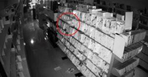 情趣店員工調監視器發現「櫥窗模特半夜動了」 網笑翻:色鬼光臨!