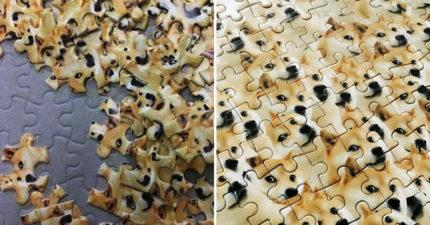 世界最難拼圖「1千隻柴柴」在亂世中誕生!等拚完疫情都結束了