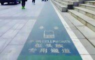 中國開「低頭族專用道」怕他們被撞 網罵翻:有什麼必要??