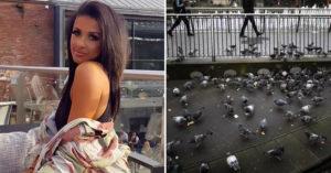 麵包屑掉地上「秒被鴿子吃光」 女子「被控違法+罰款」超傻眼!