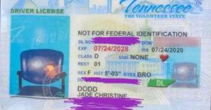 女駕駛「收到駕照」嚇到無語 證件照「只有空椅」:我人呢?