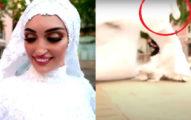準新娘「拍婚紗」...遇「黎巴嫩大爆炸」驚險畫面全錄下!