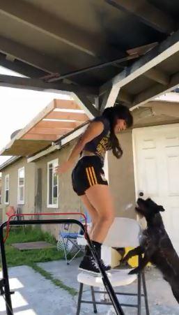 她「拉單槓」嚇死呆汪 下秒「超暖心救援」:妳快點下來!