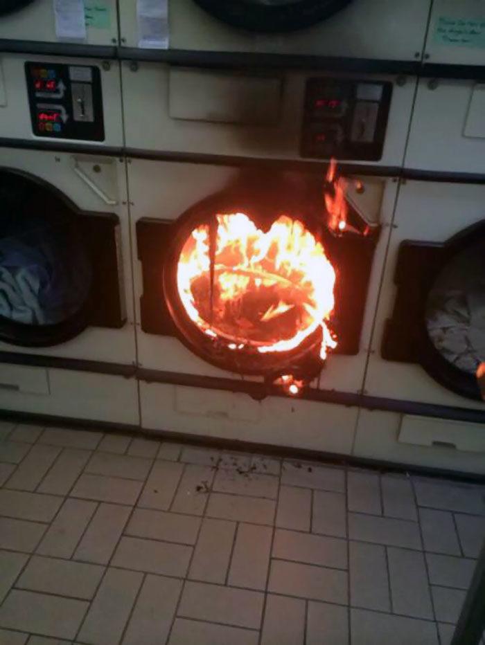 42個讓你今天好過一點的「洗衣機悲劇」 狗狗超期待你「洗錯毛衣」
