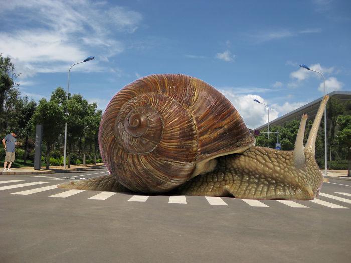 65個「親愛的,我把動物變大了」案例!「巨大蟑螂」比哥吉拉恐怖