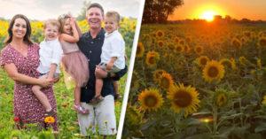 2020太負面...農夫種「200萬棵向日葵」換遊客一點正能量!