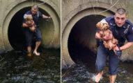 小狗被嚇到跳水溝!暖警立馬脫鞋「踏進髒水」抱緊緊:不用再害怕了~