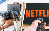 世界最chill工作:穿睡衣「看10小時Netflix」就能拿1萬