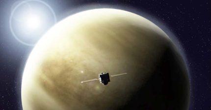 金星上有生命? 科學家找到「來自微生物」的關鍵氣體