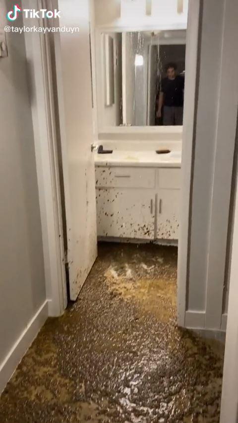 影/新家天花板「膨脹漏水」太詭異 突然「狂噴屎水」屋主崩潰